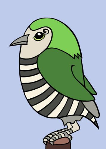 horsefieldscuckoo