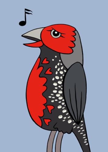 paintedfinch