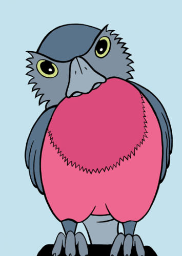 pinkrobin